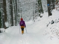 Winterwanderung-Sankenbachsee-Schwarzwald (2)