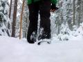 Winterwanderung-Sankenbachsee-Schwarzwald (4)
