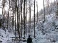 Wanderung-Schwarzwald-Schweinbachtal (15)
