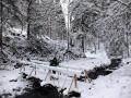 Wanderung-Schwarzwald-Schweinbachtal (9)