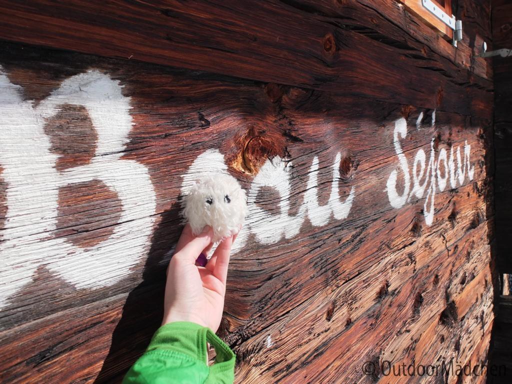 Schneeschuhtour-schweiz-wallis (15)