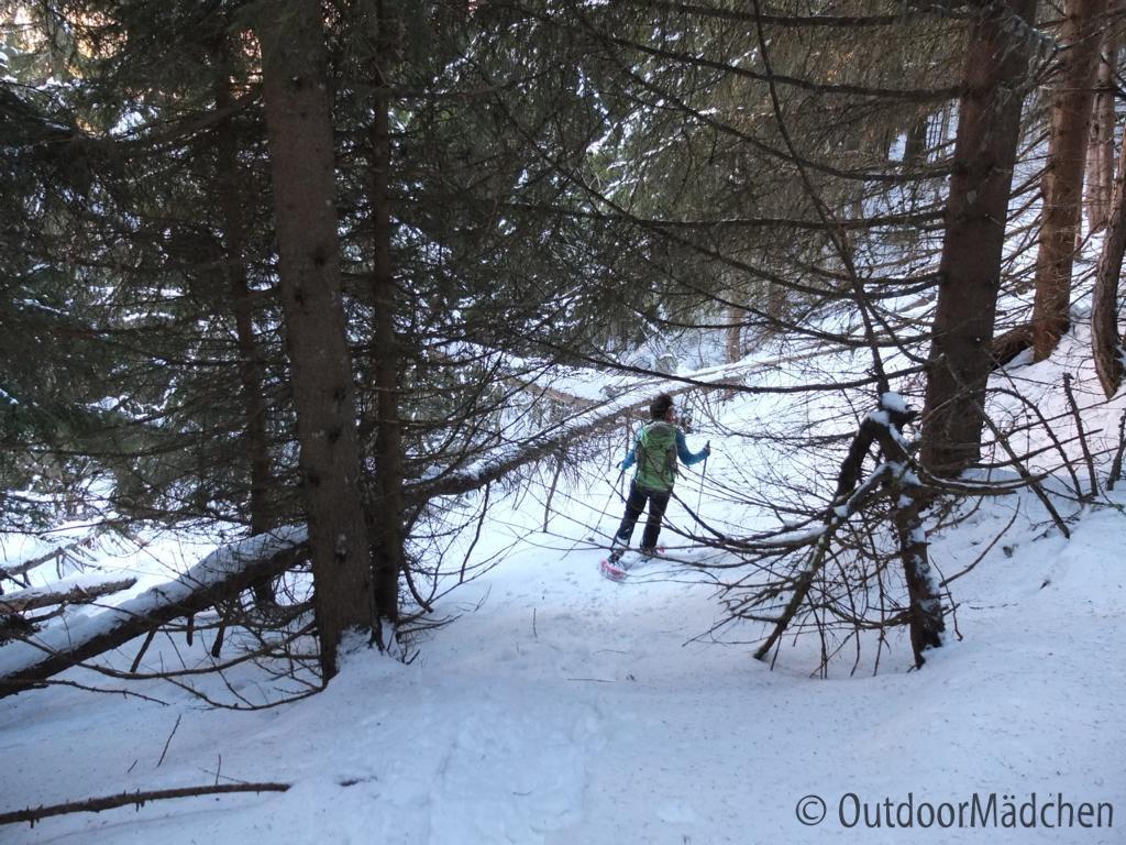 Schneeschuhtour-schweiz-wallis (21)