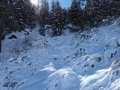 Schneeschuhtour-schweiz-wallis (16)