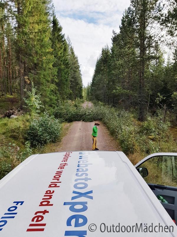 VW-Bus-Tour-Sued-Schweden-outdoormaedchen-42