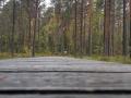 VW-Bus-Tour-Sued-Schweden-outdoormaedchen-10