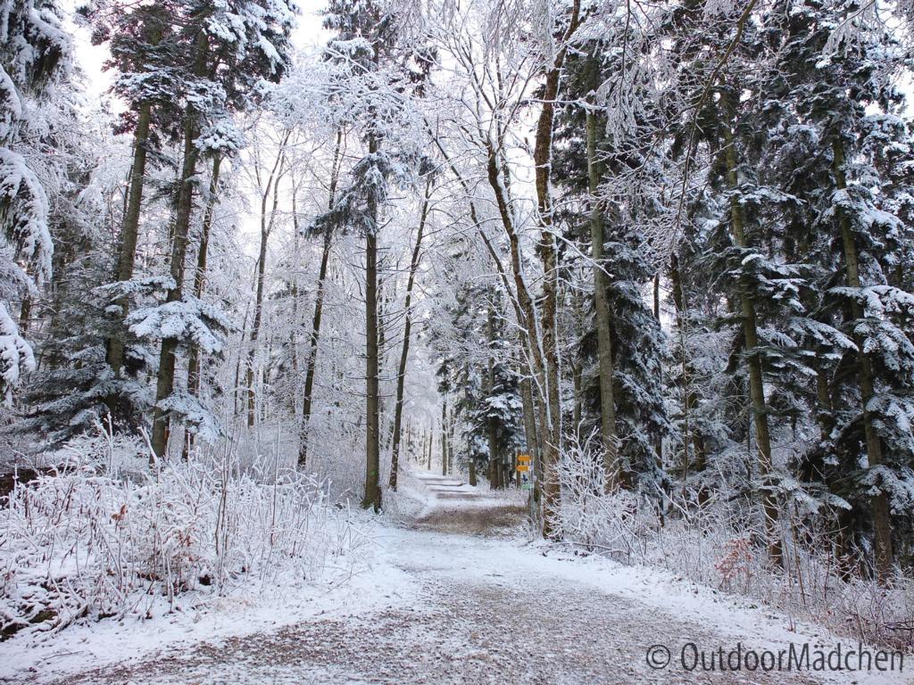 Hossinger-Leiter-Premiumwanderweg-Winter (3)