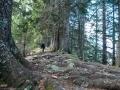 Wanderung-Hoernergruppe-Allgaeu-outdoormaedchen (13)