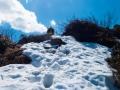 Wanderung-Hoernergruppe-Allgaeu-outdoormaedchen (16)