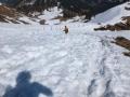 Wanderung-Hoernergruppe-Allgaeu-outdoormaedchen (23)