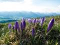 Wanderung-Hoernergruppe-Allgaeu-outdoormaedchen (8)