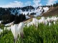 Wanderung-Hoernergruppe-Allgaeu-outdoormaedchen (9)