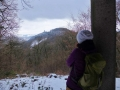 Wanderung-Drachenfels-Siebengebirge