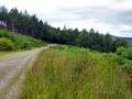 wicklow-way-irland-outdoormaedchen (10)