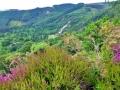 wicklow-way-irland-outdoormaedchen (11)