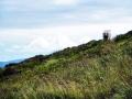 wicklow-way-irland-outdoormaedchen (18)