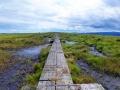 wicklow-way-irland-outdoormaedchen (24)