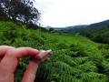 wicklow-way-irland-outdoormaedchen (4)