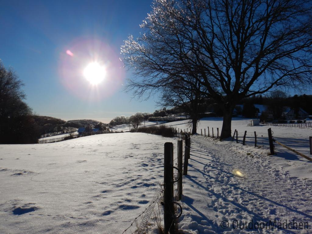Winter-wanderung-Elfringhauser-Schweiz-Hattingen-10