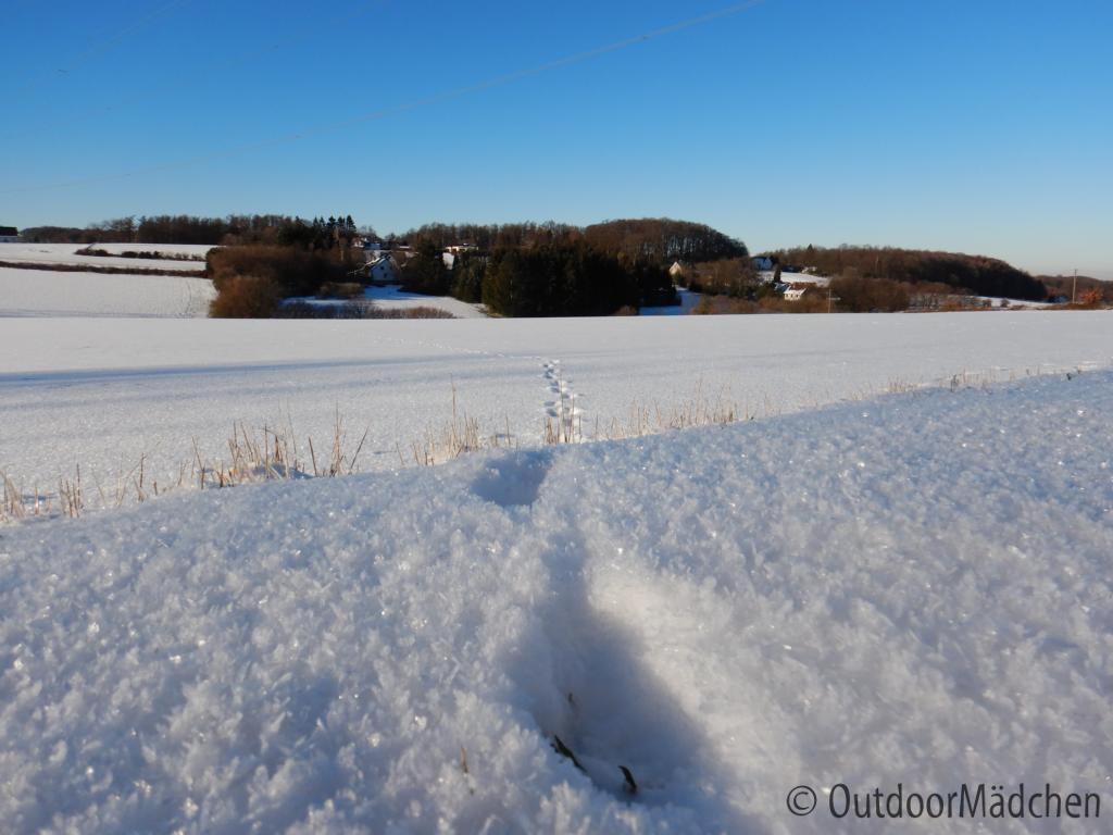 Winter-wanderung-Elfringhauser-Schweiz-Hattingen-9