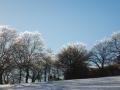 Winter-wanderung-Elfringhauser-Schweiz-Hattingen-13