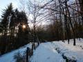 Winter-wanderung-Elfringhauser-Schweiz-Hattingen-15