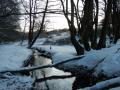 Winter-wanderung-Elfringhauser-Schweiz-Hattingen-25