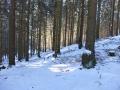 Winterwanderung-Sauerland-Clemensberg-Langenberg-Outdoormaedchen (10)