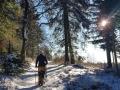 Winterwanderung-Sauerland-Clemensberg-Langenberg-Outdoormaedchen (3)