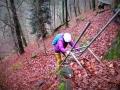 AugenBlick-Wanderung-Calw-Schwarzwald (4)