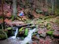 Xanderklinge-Schluchtenwanderung-Schwarzwald (4)