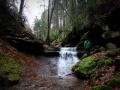 Xanderklinge-Schluchtenwanderung-Schwarzwald (6)