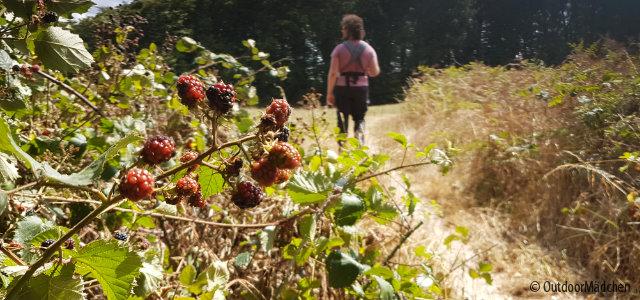 Wanderung-Brombeer-Pfade-Essen-Header